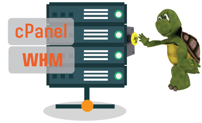 LINUX WHM/CPANEL HOSTING